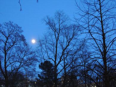 ヘルシンキの月