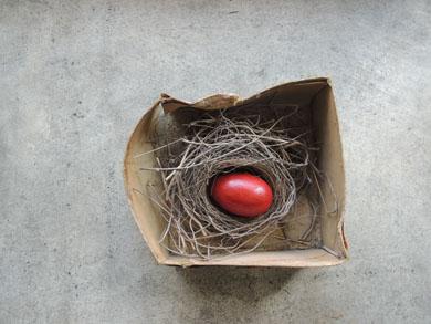 鳥の巣-3