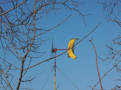 バナナ風車