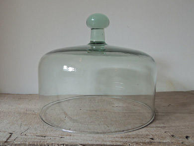 glass_dome-1