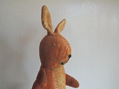 ウサギ-5