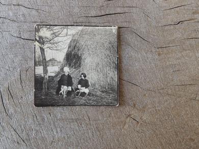 「1934年の写真」と「骨サイコロ」
